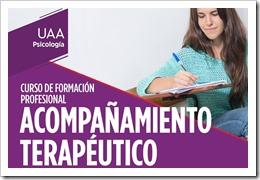 Curso Profesional de Acompañante Terapéutico